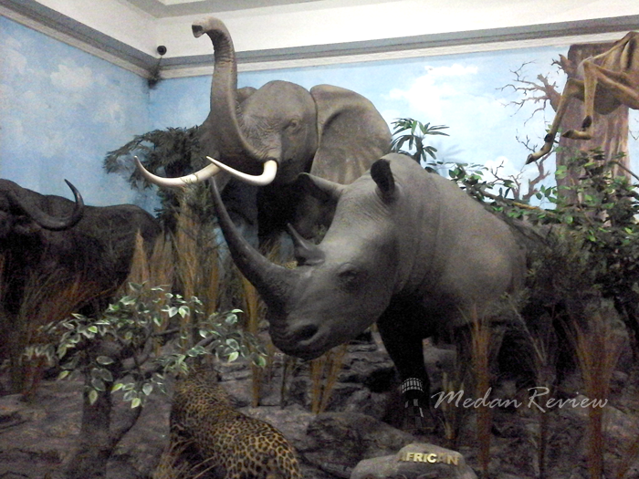 Galeri Rahmat (Rahmat International Wildlife Museum & Gallery)