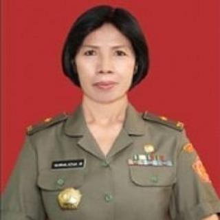 Ini Profil Wakil Gurbernur Wanita Pertama Sumatera Utara